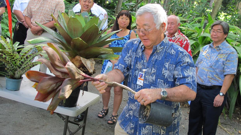 Autoridades de Hawaii dan recomendaciones para prevenir el dengue