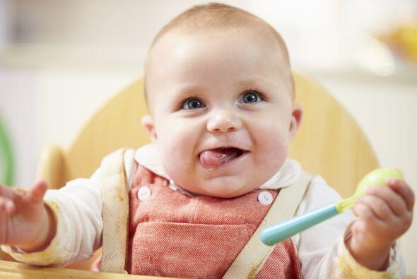 Recuerda consultar al pediatra antes de introducir cambios en la aliment...