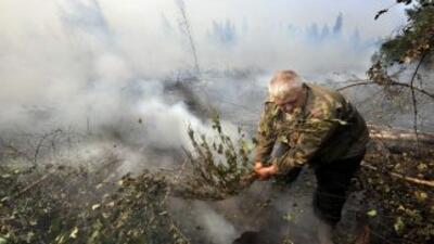 Las autoridades rusas anunciaron una reducción considerables de los ince...