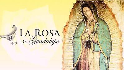 El productor de 'La rosa de Guadalupe' revela el éxito de la serie