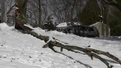 'Nueva York en un Minuto': Las buenas condiciones del tiempo facilitan la limpieza de lo que deja la tormenta invernal