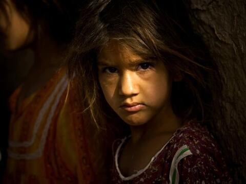 Las guerras siempre castigan con mayor ferocidad a los seres más...