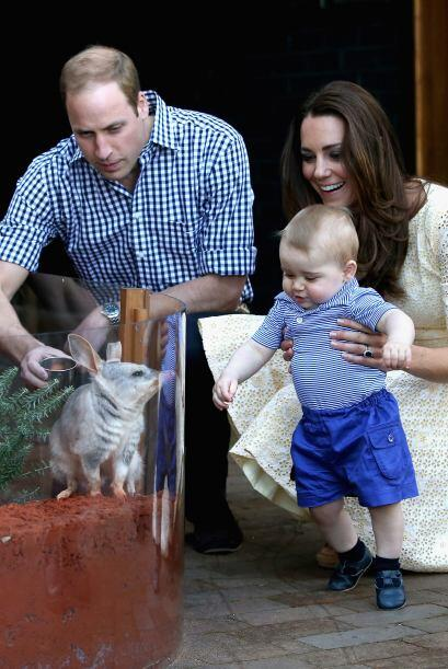 El pequeño animalito, al que nombraron 'George' en honor al hijo de los...