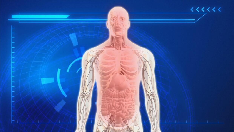 Se detectan bacterias de la enfermedad del legionario en la comisaría de...