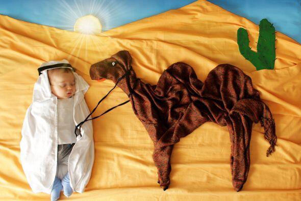 Al poco tiempo de que el bebé Alp logra conciliar el sueño, sus padres,...