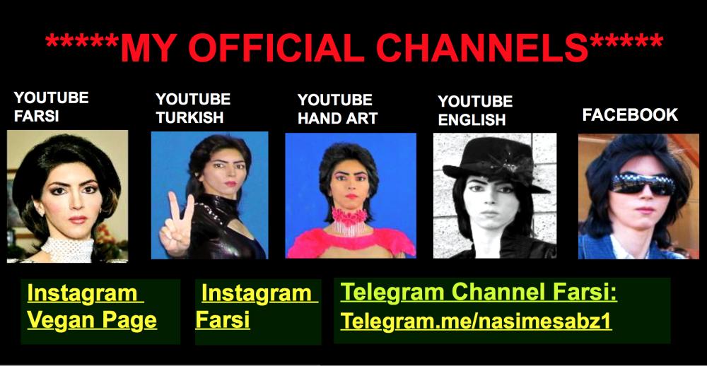 Los canales oficiales de Nasim Aghdam que fueron cancelados. Las redes s...