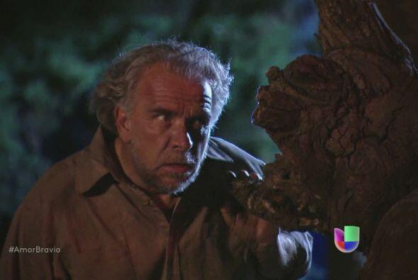 Llega a Buenaventura para comenzar su venganza. Piensa cazar a Isadora c...