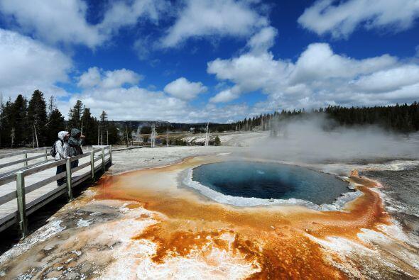 Yellowstone es famoso por su fauna y fenómenos geotérmicos.