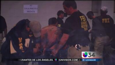 Golpe a la Mafia Mexicana en Santa Ana
