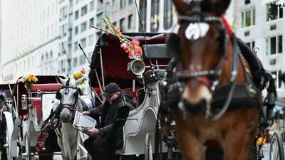 Nueva York propone prohibir los carruajes de caballos en la ciudad.