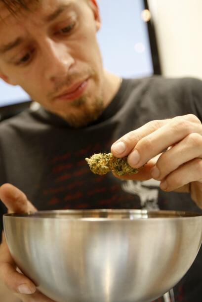 La legalización de la marihuana ha sido incluida en las boletas e...