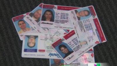 Las identificaciones podrían facilitar la obtención de licencias de mane...