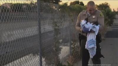 Autoridades de Los Ángeles buscan a la madre de una recién nacida que fu...