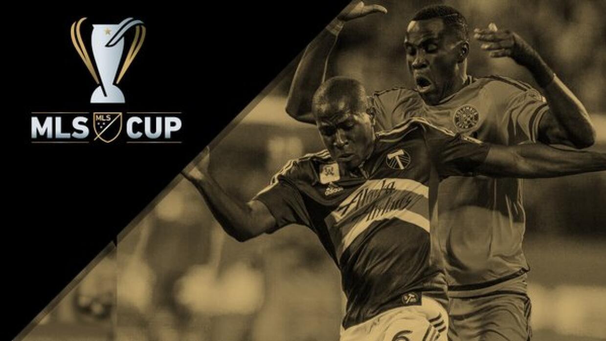 MLS Cup generic image