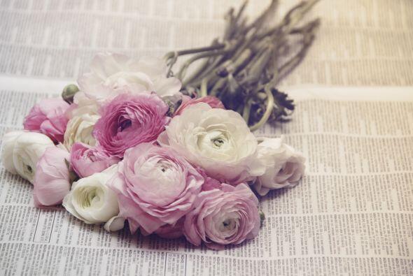 Si no quieres portar el rosa en el vestido, pero su encanto no deja de s...