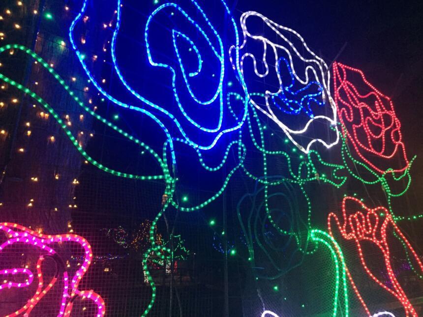 En fotos: Un recorrido por el alumbrado navideño en el zoológico de Tucs...