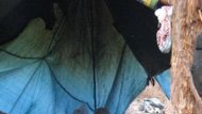 Inmigrantes detenidos por dormir en campamento 8ca3d231a2b644c4b04735ce9...