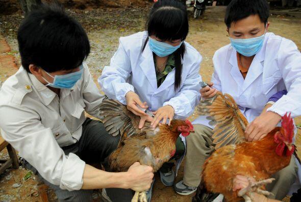Seis de los contagiados que siguen aislados y en tratamiento médico está...