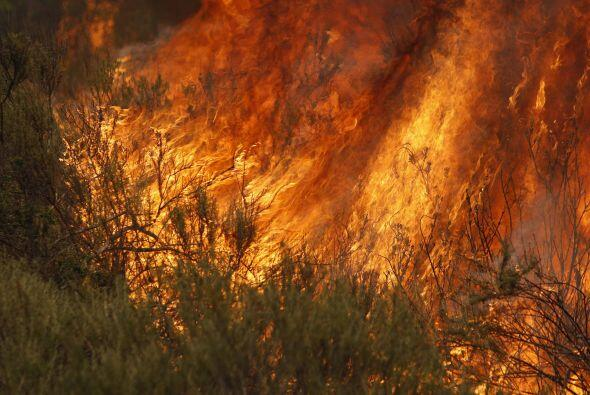 Aproximadamente 10 mil acres han sido destruidos por las llamas.