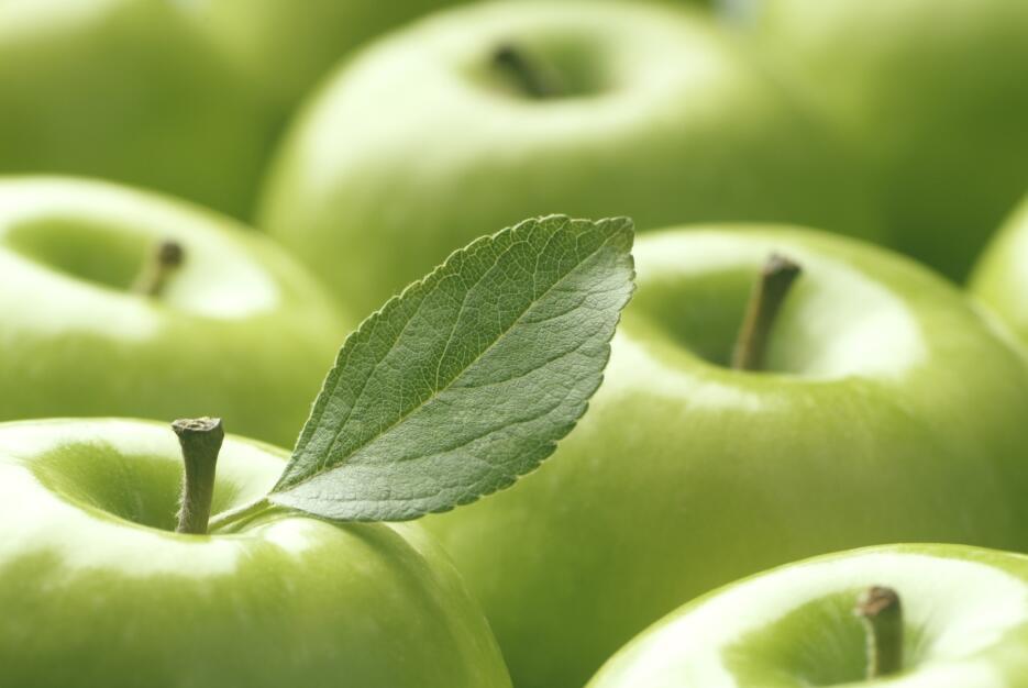 salud manzana alimentos