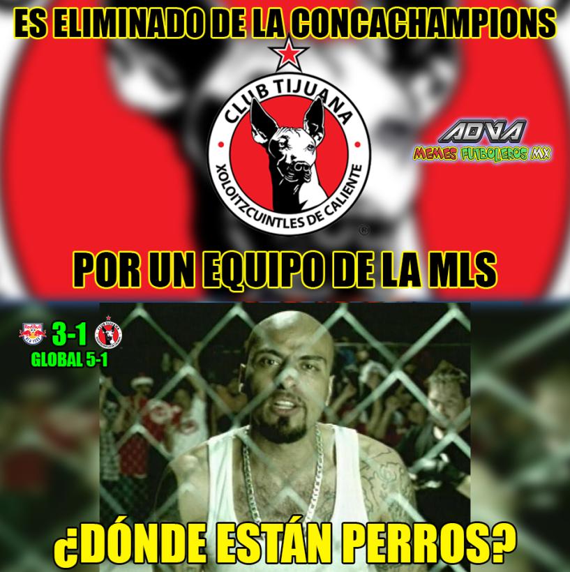 Los memes de la eliminación de  Xolos y Tigres 29177782-1620336328049056...