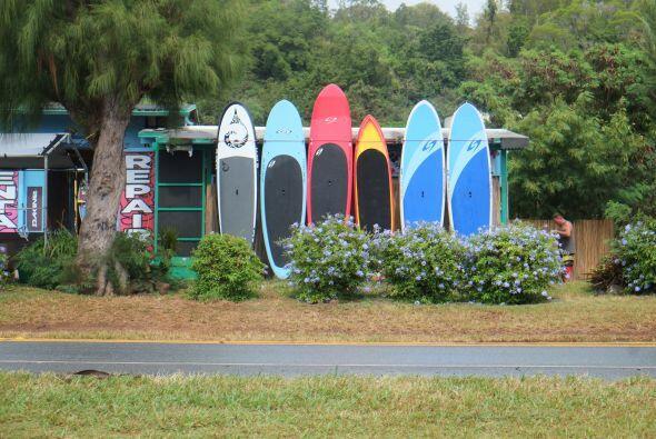 Las tablas de surf se hicieron presentes en uno de sus recorridos.