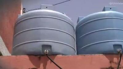 Son uno de los objetos más codiciados debido a la sequía