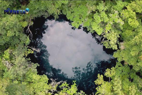 Angelita es un cenote a cielo abierto, una alberca natural que esconde u...