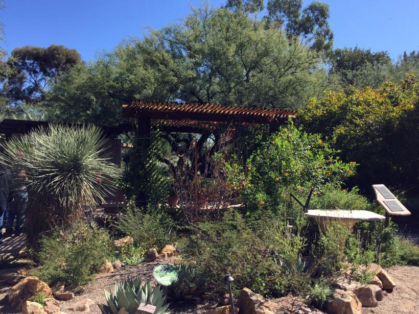 La 'Casa Azul' de Frida Kahlo llega al Jardín Botánico de Tucson  IMG_02...