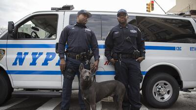 policía ny