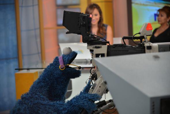 Cookie Monster quería ser el nuevo camarógrafo de Despierta América. ¡Co...