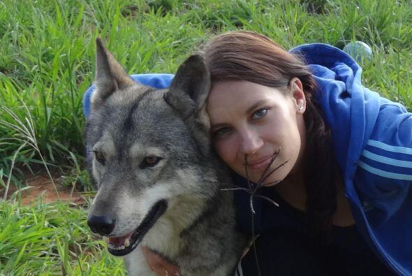 En el santuario también había lobos que estaban ahí como inquilinos nuev...