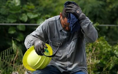 Un trabajador de la AEE hace una pausa durante su jornada de trabajo en...