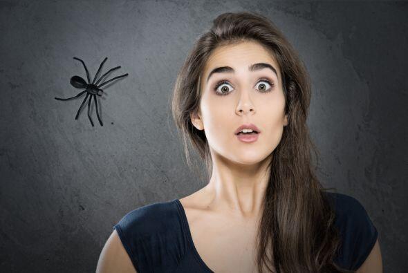 Libra  Miedo a las Arañas   Realmente son muchos los hombres y mu...