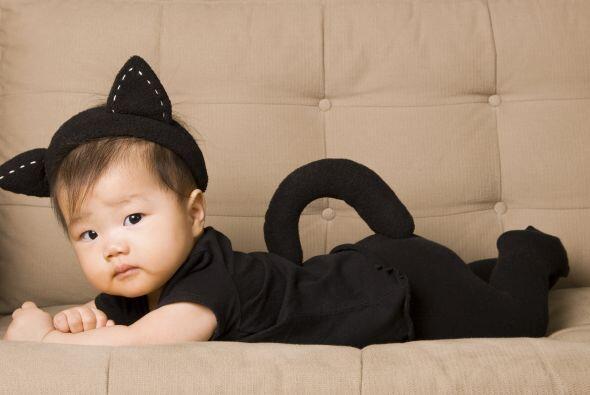 Por más que lo intentes ningún bebé podrá verse aterrador, pues al mirar...