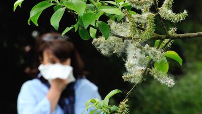 Remedios naturales para aliviar las alergias