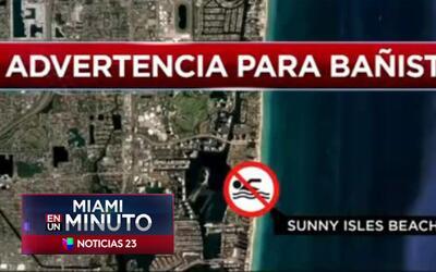 'Miami en un Minuto': emiten advertencia para bañistas en playa de Sunny...