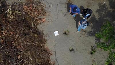 Conmoción en México por el hallazgo de una fosa clandestina con al menos 166 cadáveres