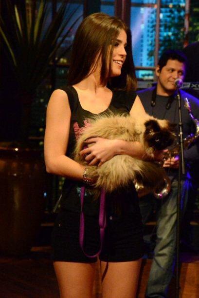 Mi Amor llegó con una gatita llamada Carbón por si a Sócrates se le anto...