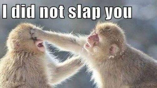 """""""I did not slap you""""."""