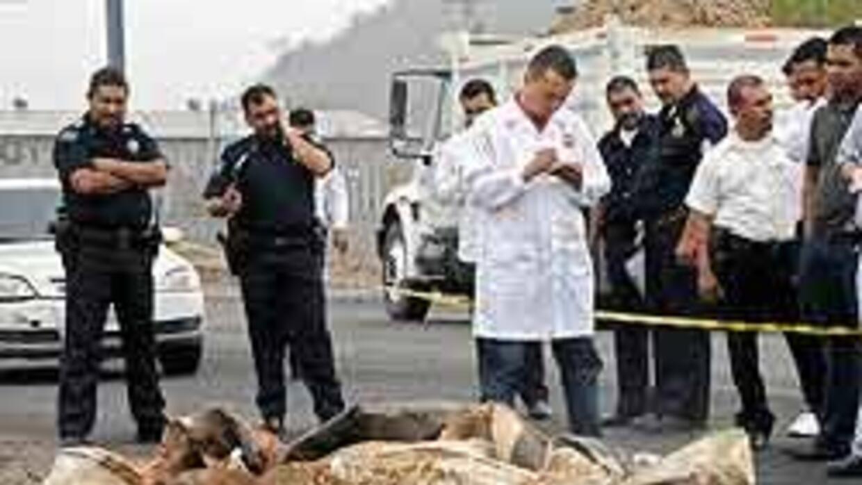 Narcotráfico en México muestra poder intimidatorio: 200 crímenes en seis...