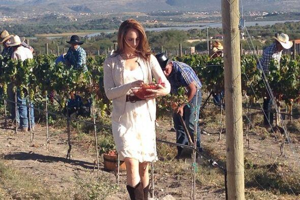 """""""Renata"""" probará el fruto prohibido."""