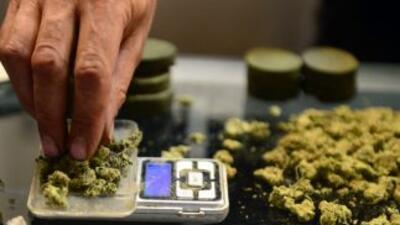 La marihuana continúa en la lista de drogas peligrosas, según declaró un...