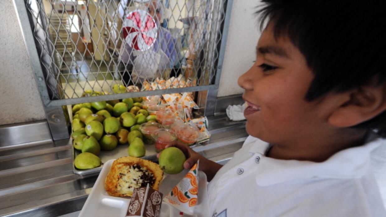 La reducción de obesidad entre niños latinos fue menor.