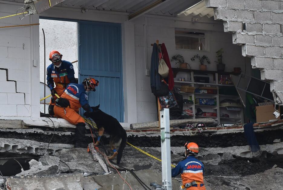 Terremoto México Internacionales