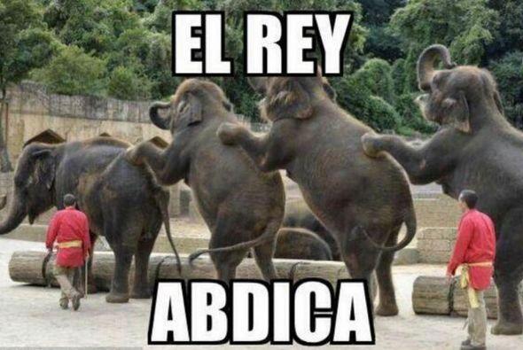 Los elefantes no han quedado exentos de las bromas, a raíz de la conocid...