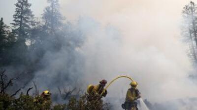 El fuego que inició un cazador el 17 de agosto ha consumido los últimos...