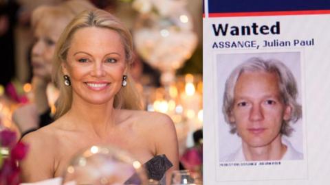 Pamela Anderson Captura de pantalla 2017-02-07 a la(s) 9.33.39 AM.png