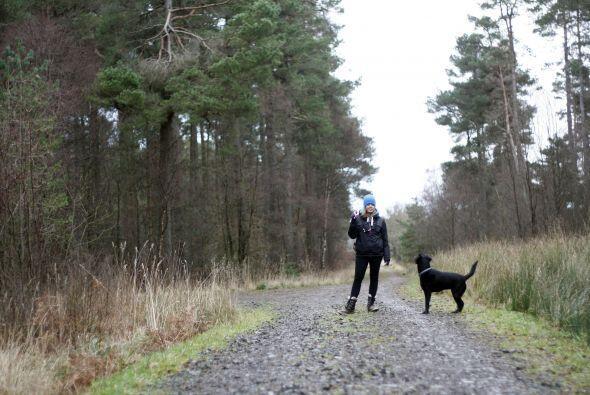 Las alergias en los perros son muy parecidas a la de las personas, tambi...