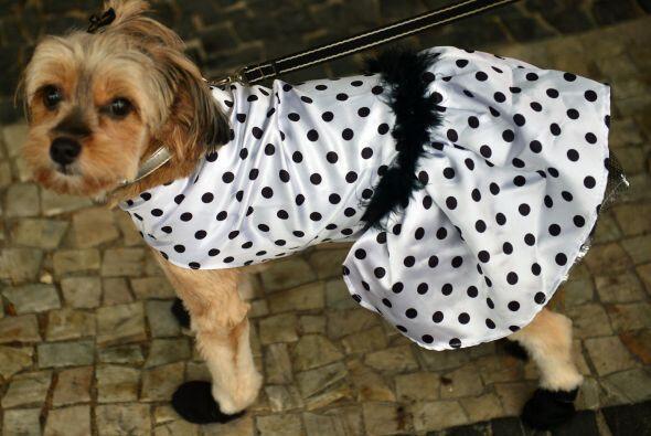 Y aquí hay otra chica 'glamourosa' ya que decidió llevar también unas za...